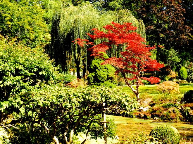 Jardin japonais 1 ile de france belle france beaute for Jardin japonais en ile de france